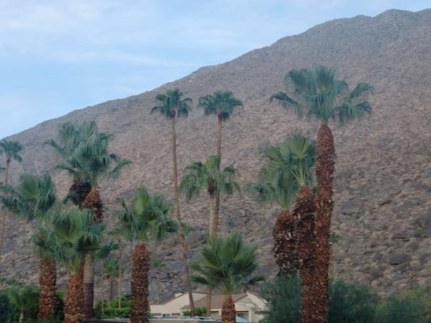Palm Springs 2013 060